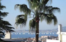 Vente 2 pièces terrasse Nice Ouest